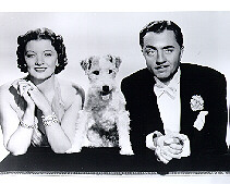 Thin Man Picture